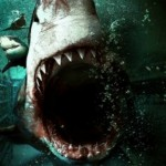 Australian Shark movie 'Bait 3D' finally releases an official trailer, and it looks a right corker!!
