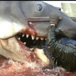 Death Scene of the Week: Jaws - Quint gets chomped!