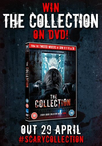 the-collection-comp-image-web
