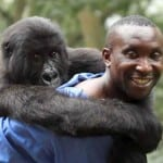 Netflix Acquires Documentary VIRUNGA