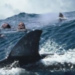 Thriller 'Under the Deep' will head into Shark infested waters