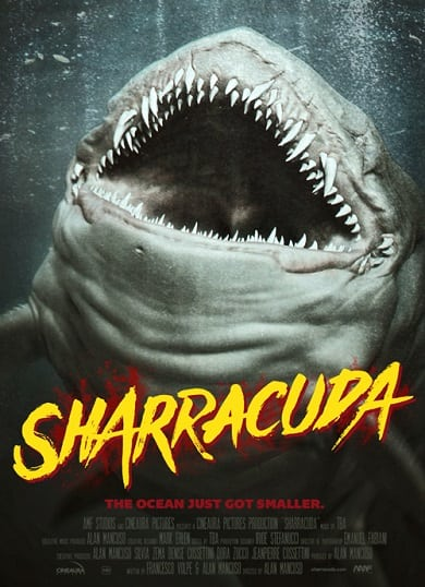 sharracuda2