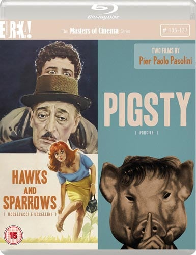 hawks-and-sparrows-pigsty