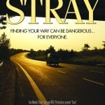 Stray - HCF Review