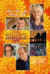 THE BEST EXOTIC MARIGOLD HOTEL [short review]