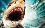 Blimey that was quick! A sequel to 'Bait 3D' is announced by Arclight Films