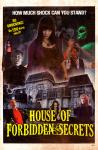 THE HOUSE OF FORBIDDEN SECRETS (2013)